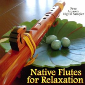 Native Flutes for Relaxation logo