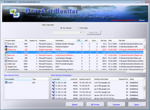 ProcNetMonitor Interface