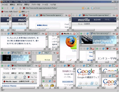 Split Browser Interface